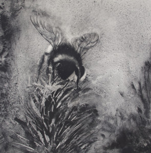 Gabe Tempesta, Pollinator #2, charcoal on board, 30x30