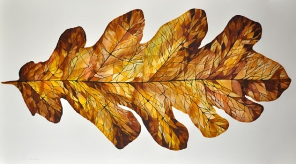 Idoline Duke, Big Oak Leaf III, Watercolor on Paper, 30x53, 2015